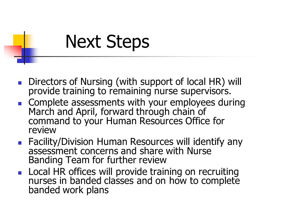 Next Steps Directors of Nursing (with support of local HR) will provide training to remaining nurse supervisors.