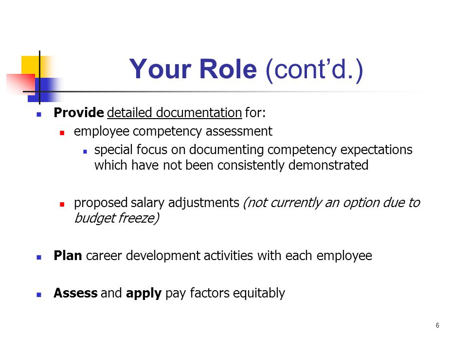 Your Role (cont'd.) Provide detailed documentation for: