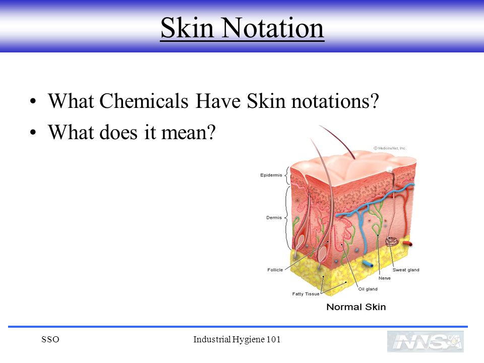 Skin Notation What Chemicals Have Skin notations What does it mean