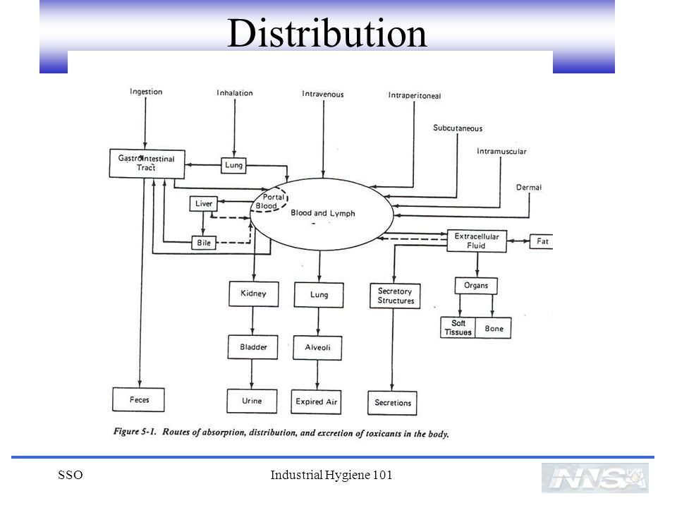 Distribution SSO Industrial Hygiene 101