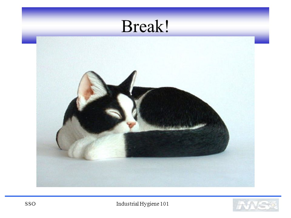 Break! SSO Industrial Hygiene 101