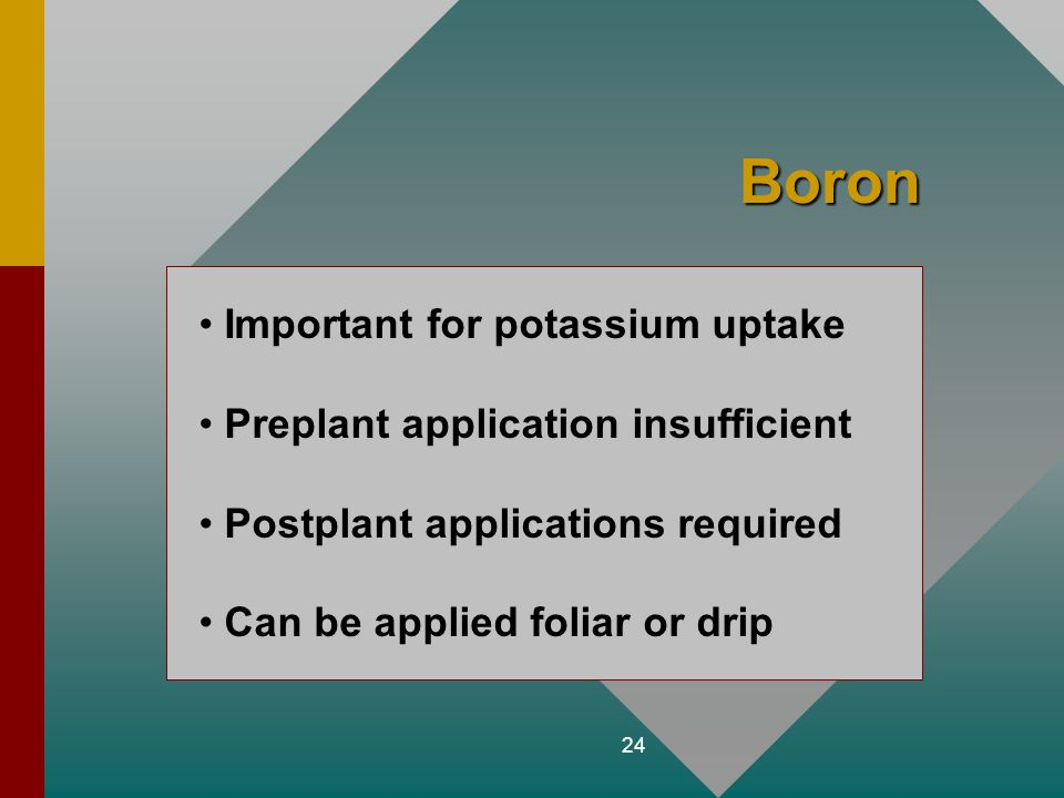 Boron Important for potassium uptake Preplant application insufficient