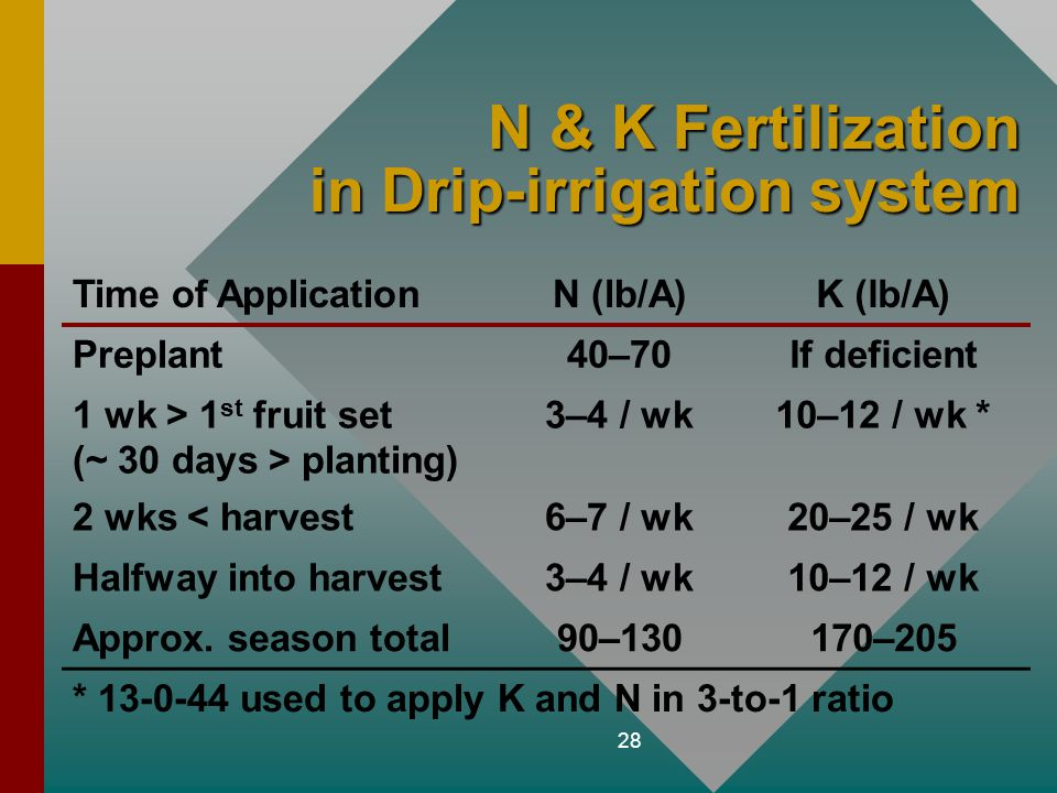 N & K Fertilization in Drip-irrigation system