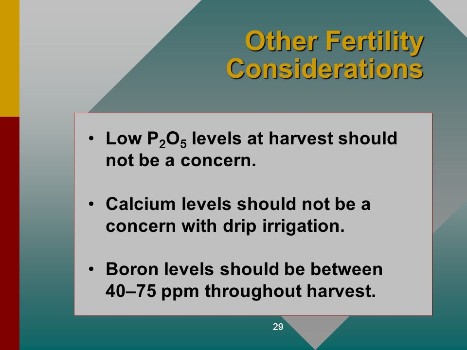 Other Fertility Considerations