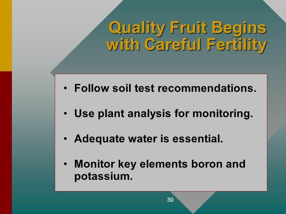 Quality Fruit Begins with Careful Fertility