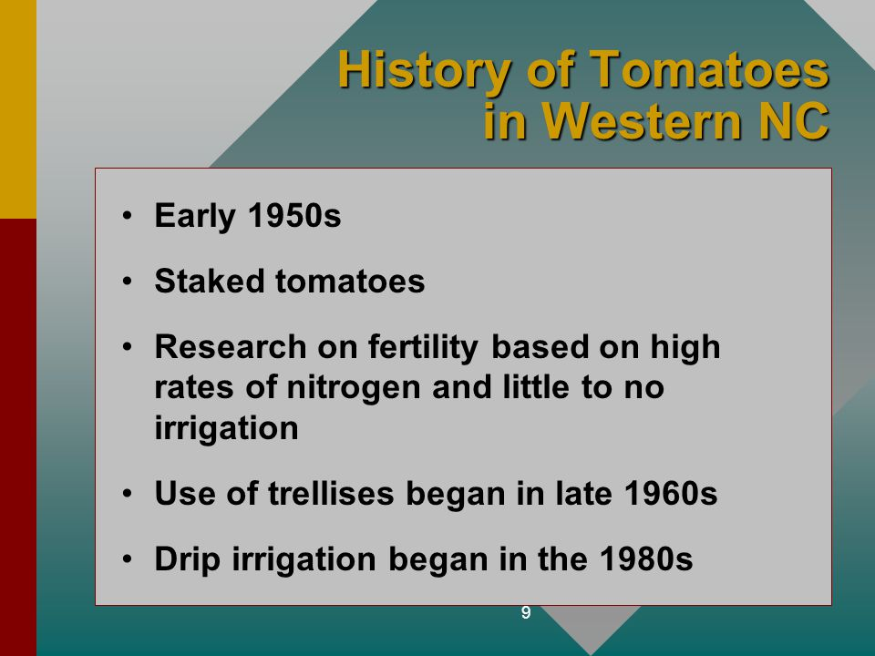 History of Tomatoes in Western NC