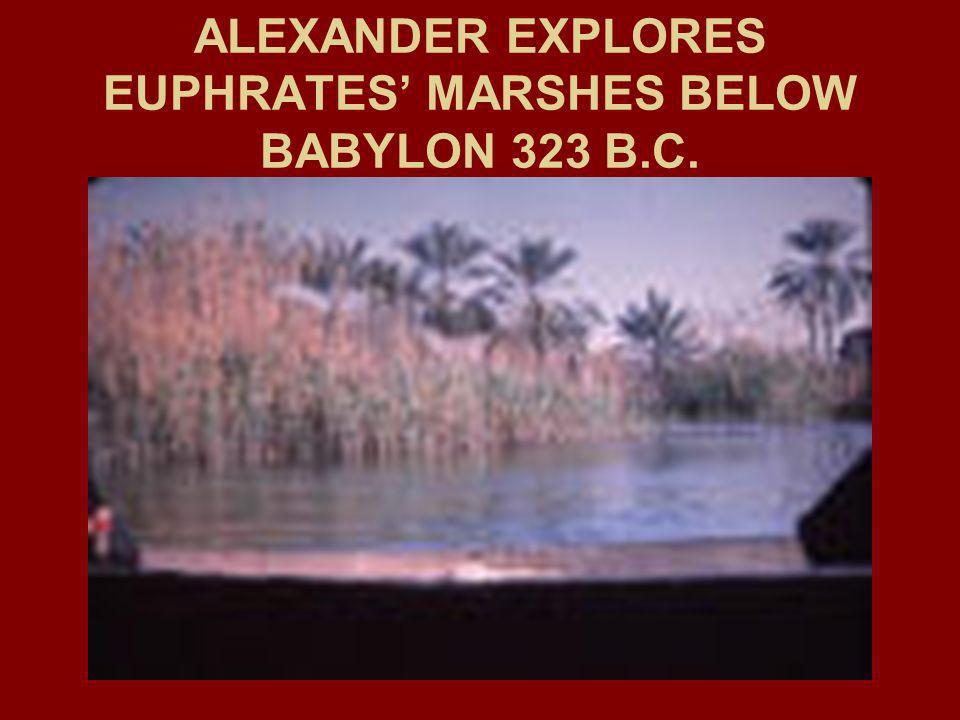 ALEXANDER EXPLORES EUPHRATES' MARSHES BELOW BABYLON 323 B.C.