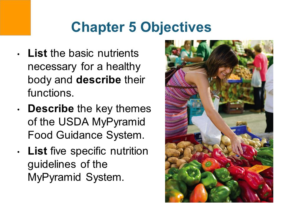 Chapter 5 ObjectivesList the basic nutrients necessary for a healthy body and describe their functions.