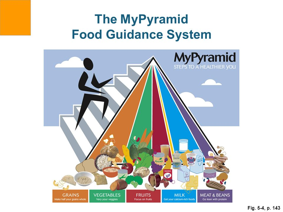 The MyPyramid Food Guidance System