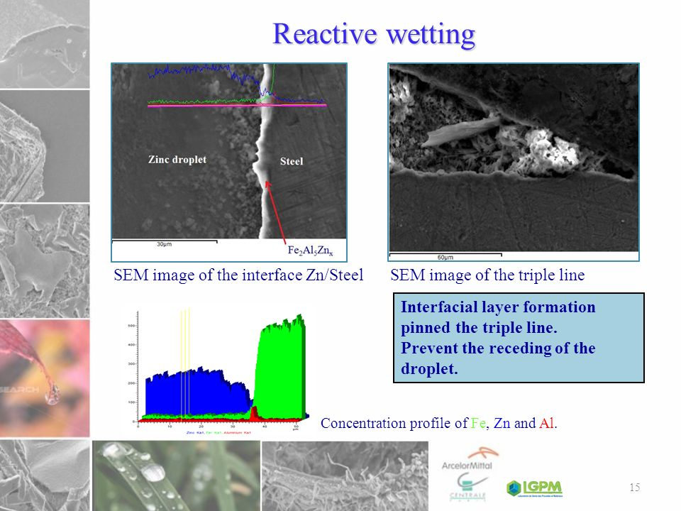 Reactive wetting SEM image of the interface Zn/Steel