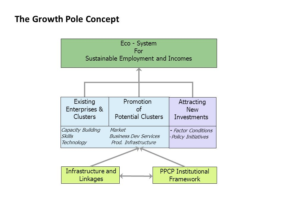 The Growth Pole Concept