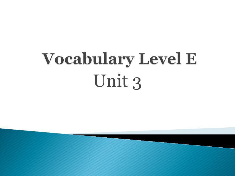 Vocabulary Level E Unit 3