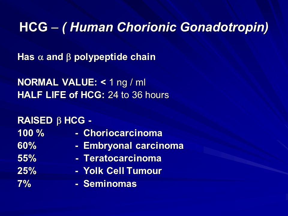 HCG – ( Human Chorionic Gonadotropin)