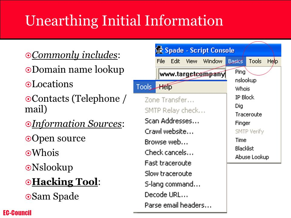 Unearthing Initial Information