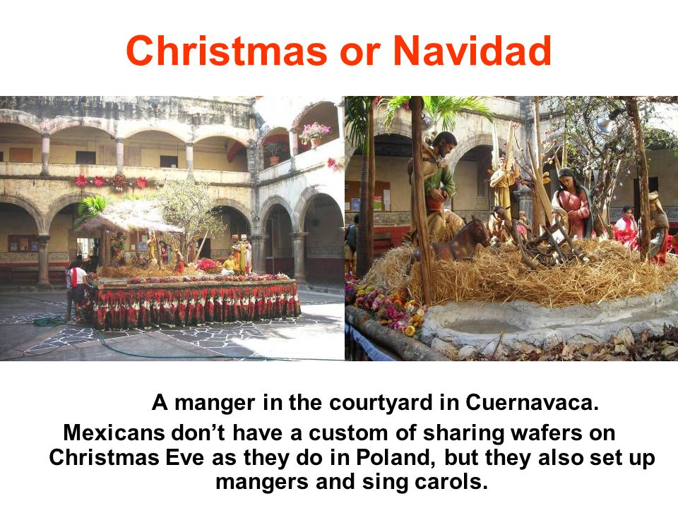 A manger in the courtyard in Cuernavaca.