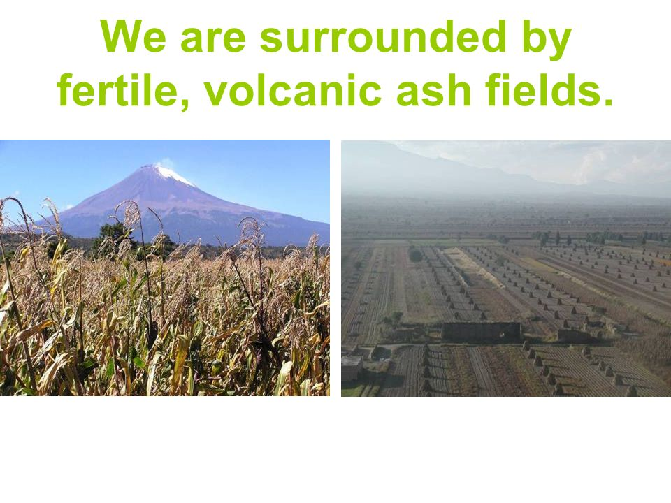 We are surrounded by fertile, volcanic ash fields.