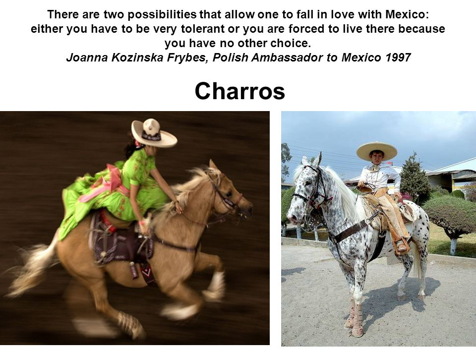 There are two possibilities that allow one to fall in love with Mexico: either you have to be very tolerant or you are forced to live there because you have no other choice. Joanna Kozinska Frybes, Polish Ambassador to Mexico 1997