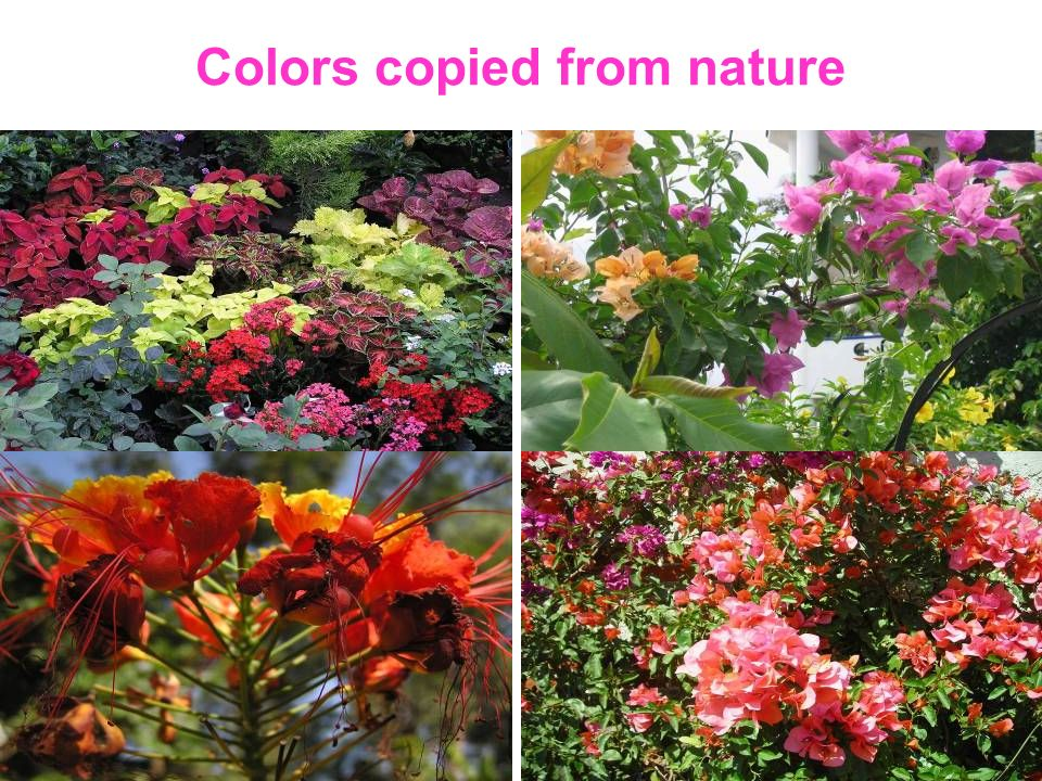 Colors copied from nature