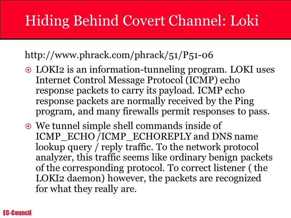 Hiding Behind Covert Channel: Loki