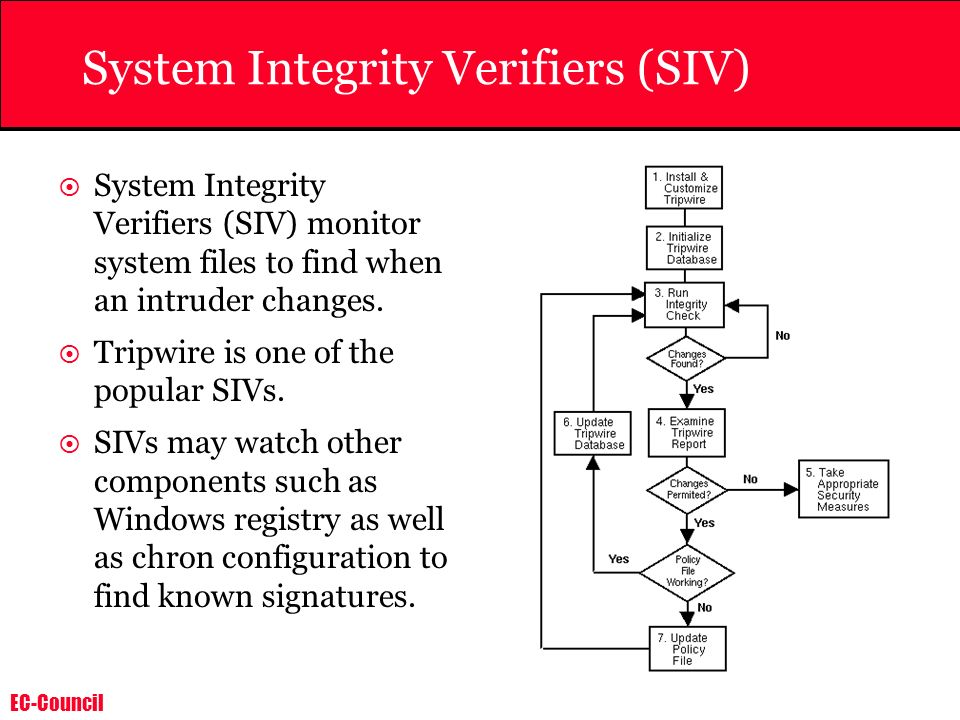 System Integrity Verifiers (SIV)