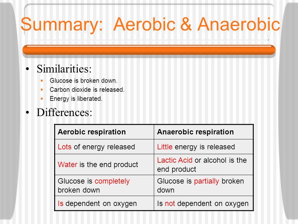 Summary: Aerobic & Anaerobic