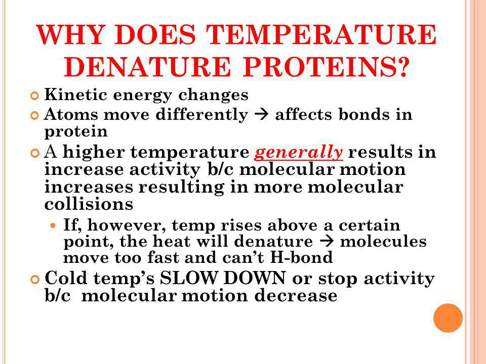 WHY DOES TEMPERATURE DENATURE PROTEINS