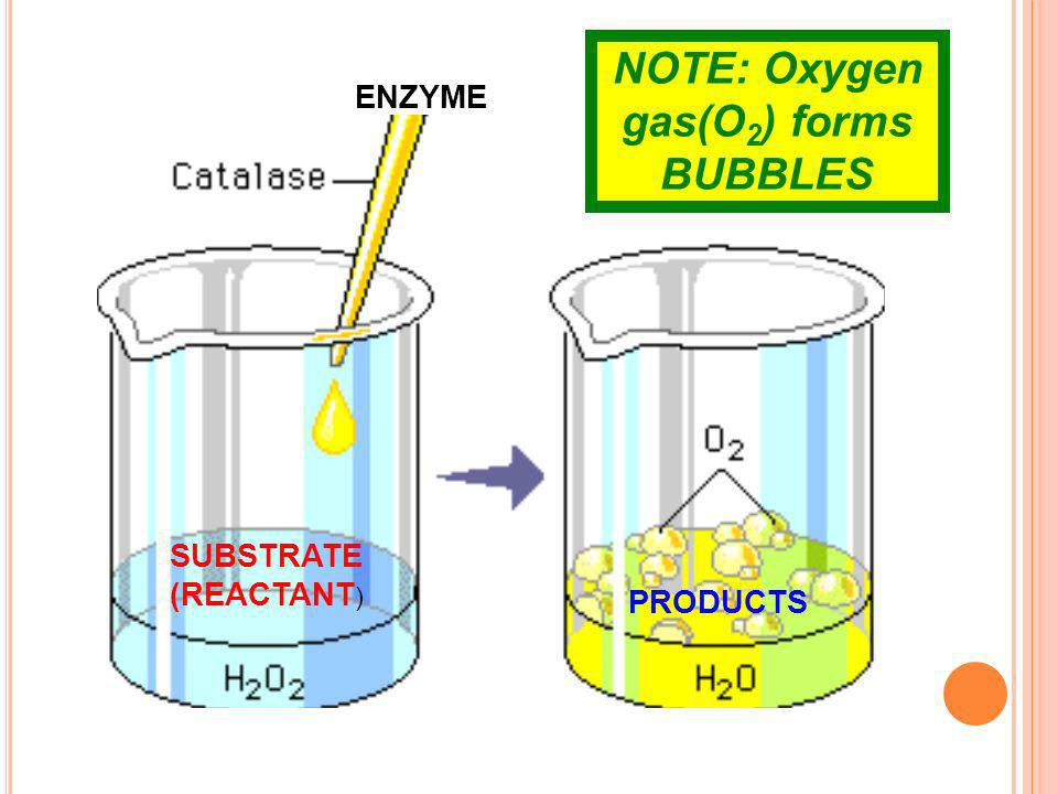 NOTE: Oxygen gas(O2) forms BUBBLES