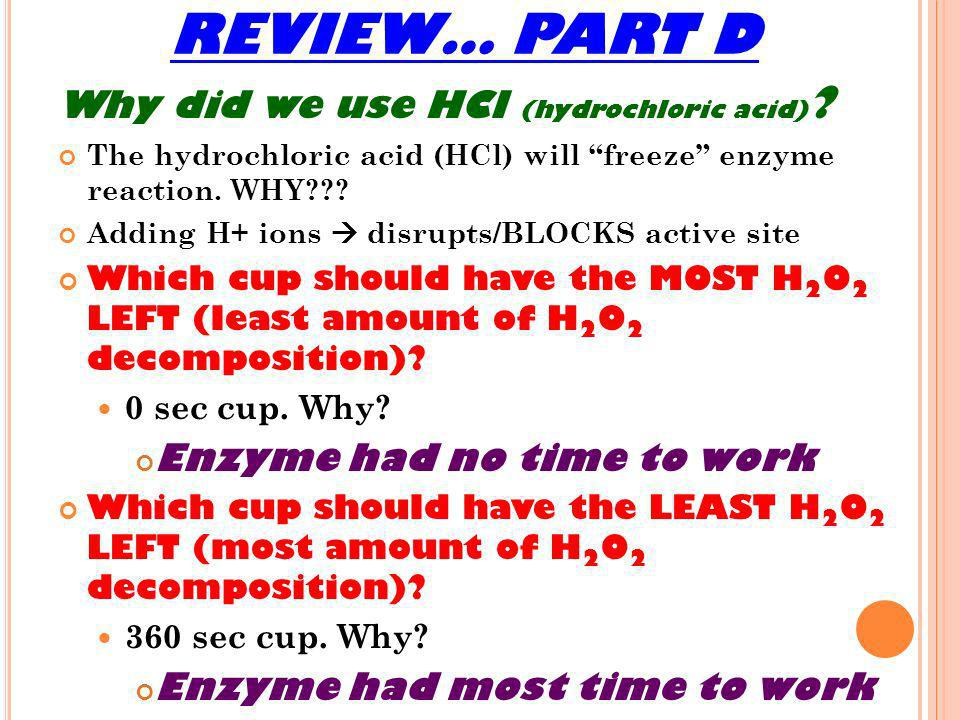 REVIEW… PART D Why did we use HCl (hydrochloric acid)