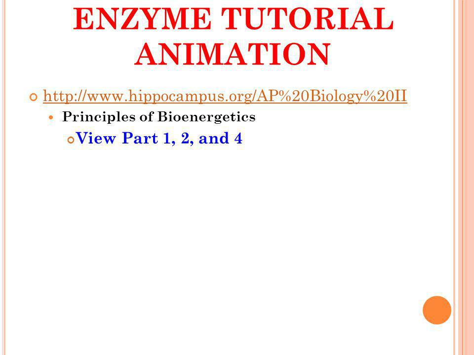 ENZYME TUTORIAL ANIMATION