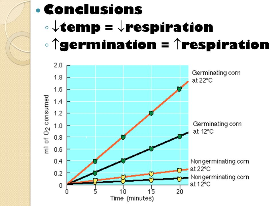 Conclusions temp = respiration germination = respiration