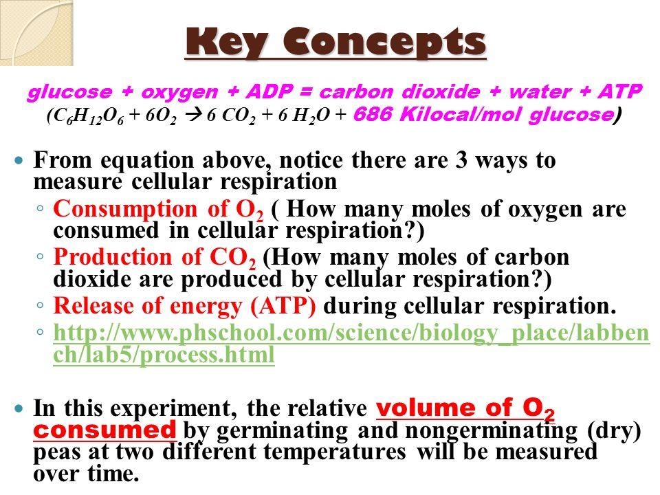 Key Conceptsglucose + oxygen + ADP = carbon dioxide + water + ATP. (C6H12O6 + 6O2  6 CO2 + 6 H2O + 686 Kilocal/mol glucose)