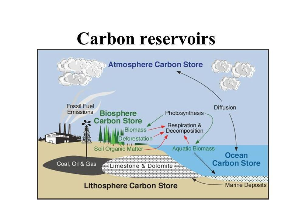 Carbon reservoirs Parts of the Earth system where carbon is stored is called carbon reservoirs