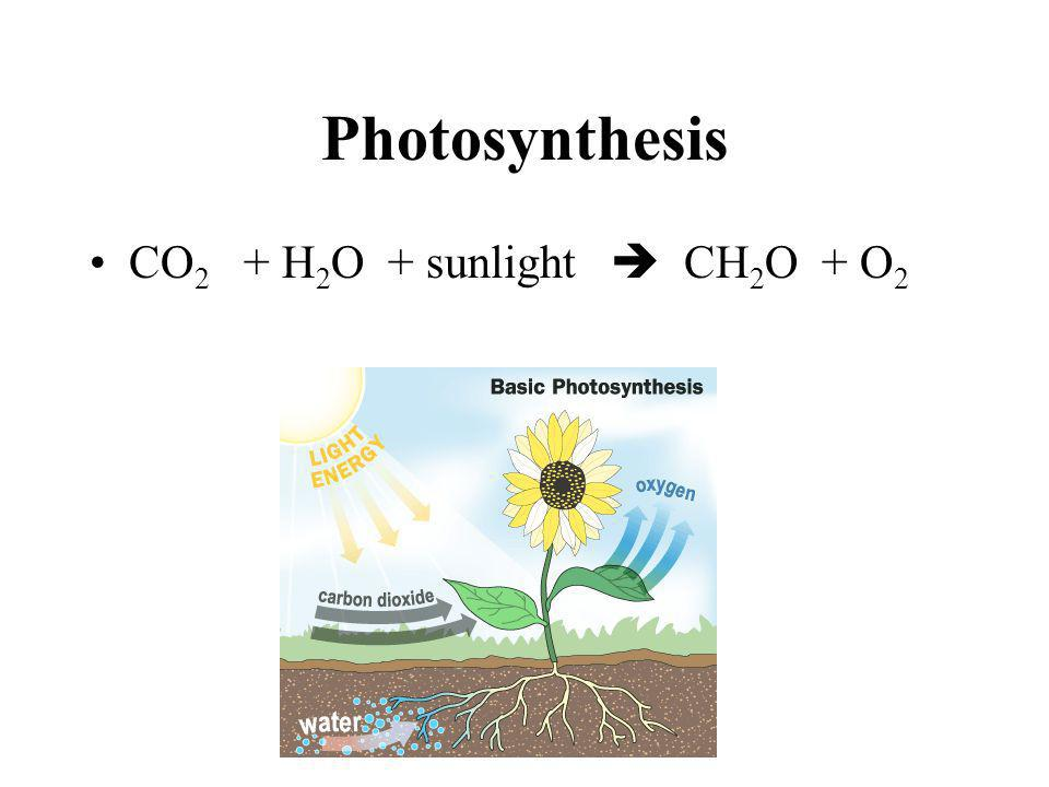 Photosynthesis CO2 + H2O + sunlight  CH2O + O2