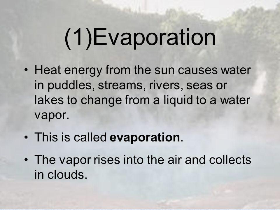 (1)Evaporation Heat energy from the sun causes water in puddles, streams, rivers, seas or lakes to change from a liquid to a water vapor.