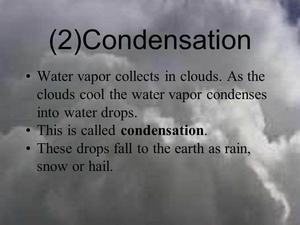 (2)CondensationWater vapor collects in clouds. As the clouds cool the water vapor condenses into water drops.