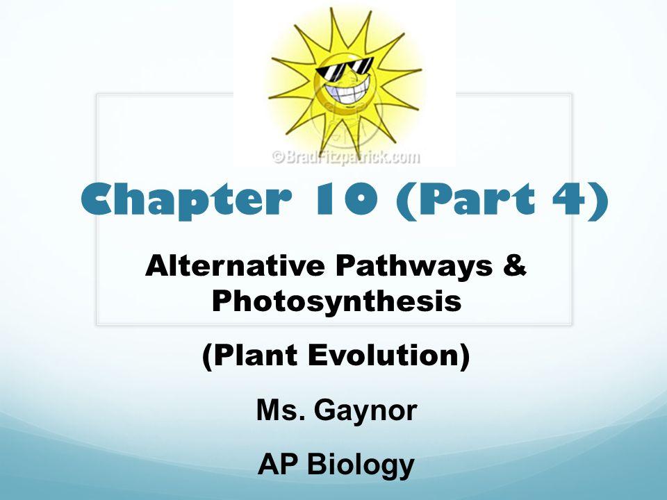 Alternative Pathways & Photosynthesis