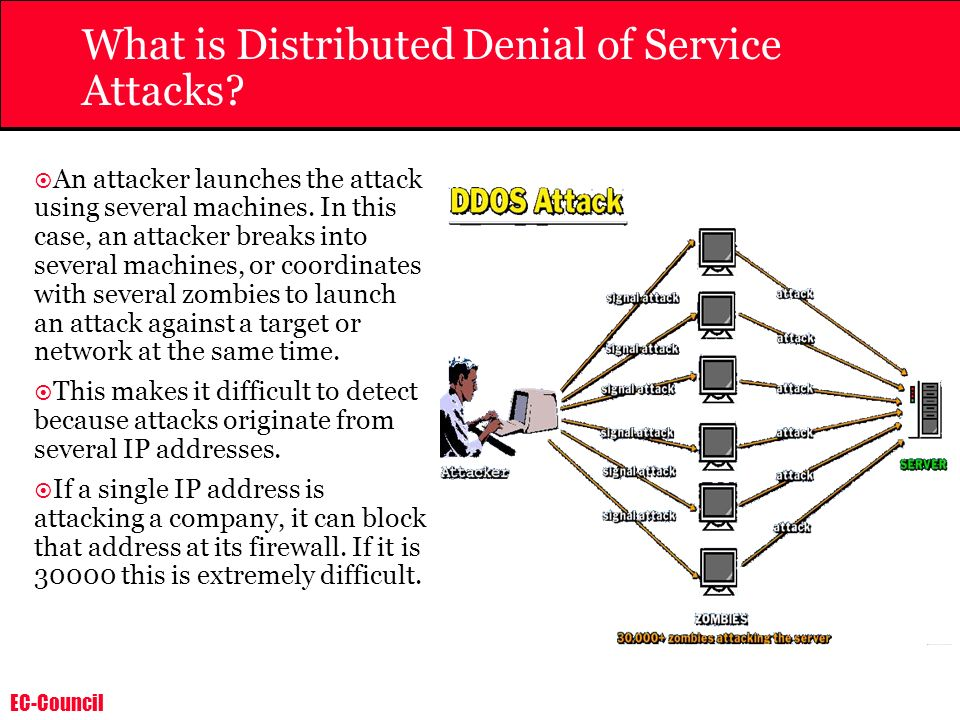 What is Distributed Denial of Service Attacks