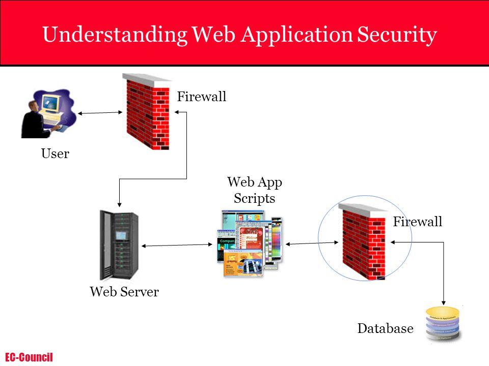 Understanding Web Application Security