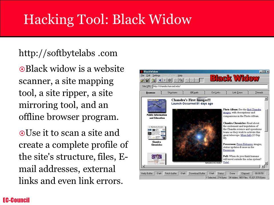 Hacking Tool: Black Widow