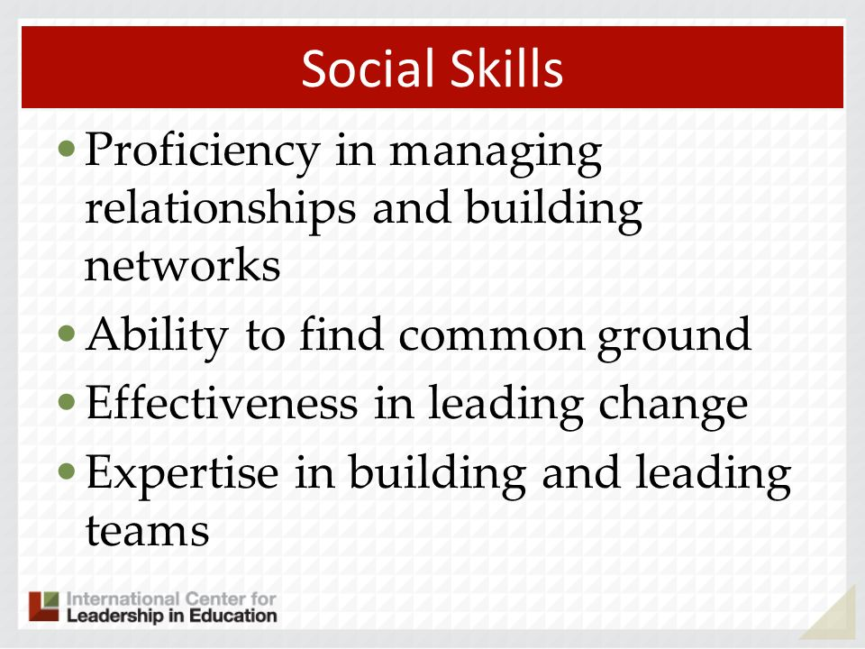 Social Skills Proficiency in managing relationships and building networks. Ability to find common ground.