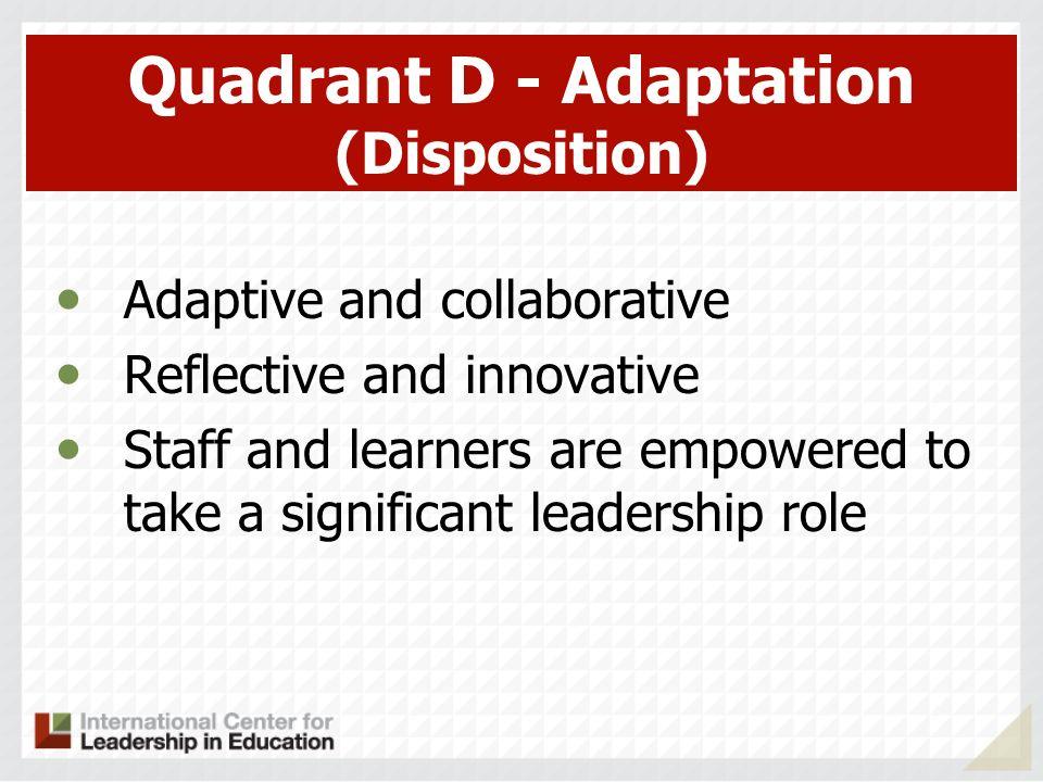 Quadrant D - Adaptation (Disposition)