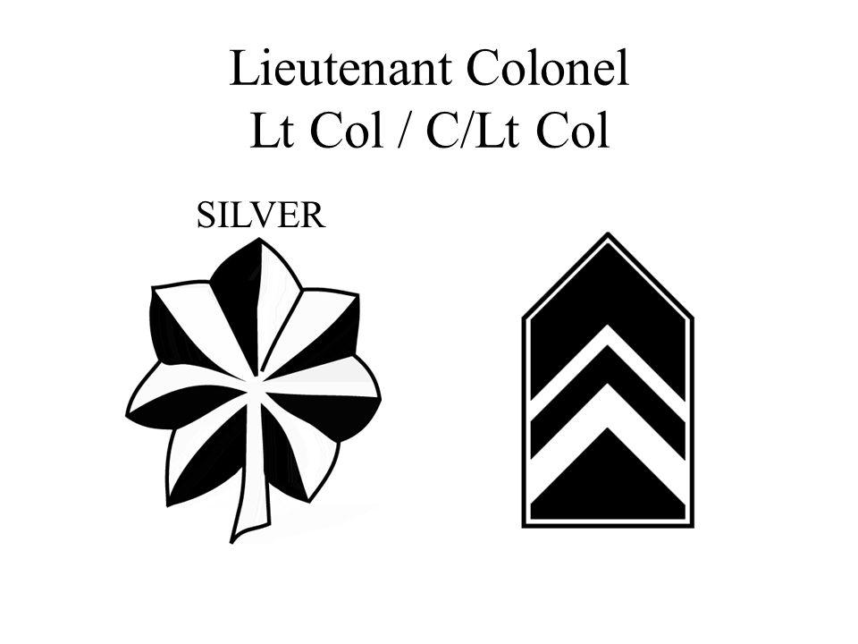 Lieutenant Colonel Lt Col / C/Lt Col