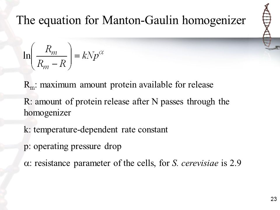 The equation for Manton-Gaulin homogenizer