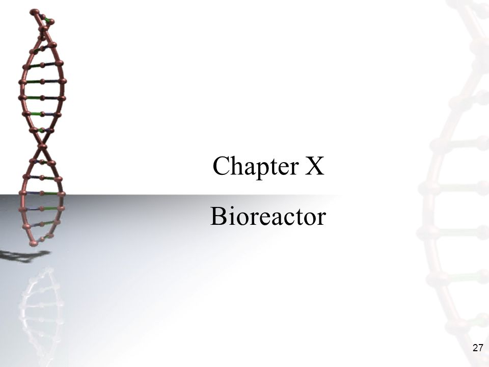 Chapter X Bioreactor