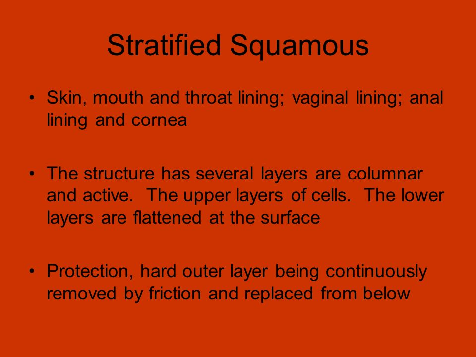 Stratified Squamous Skin, mouth and throat lining; vaginal lining; anal lining and cornea.