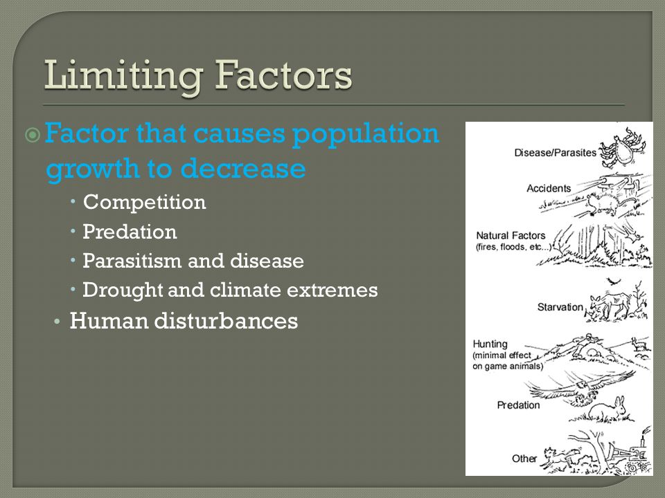 Limiting Factors Factor that causes population growth to decrease