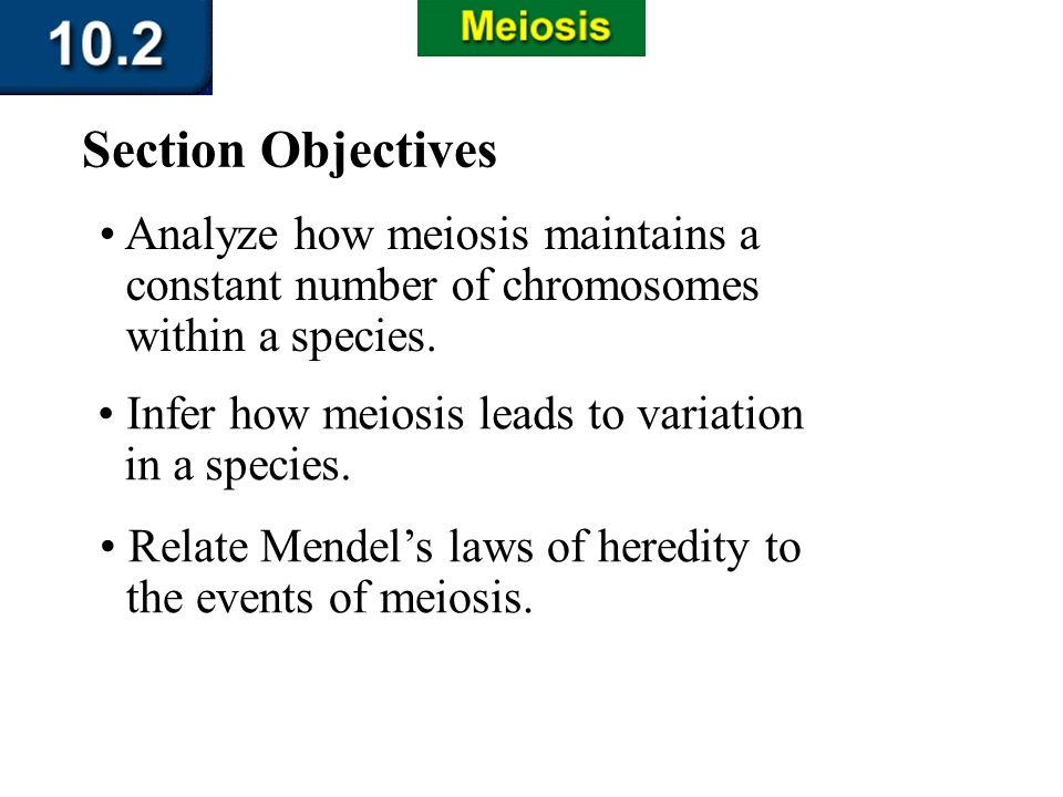 10.2 Section Objectives – page 263