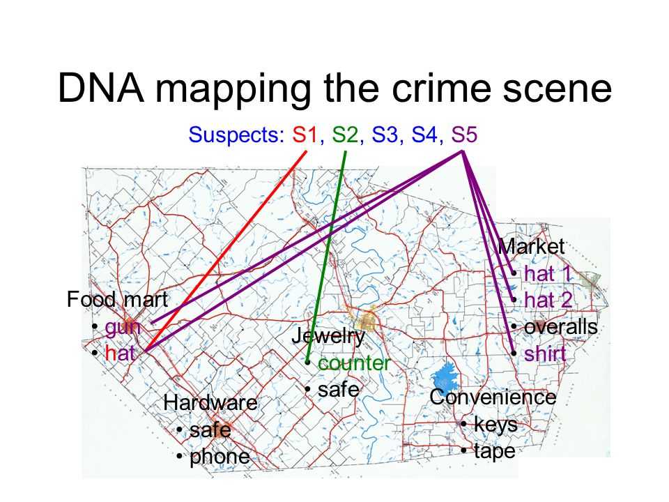 DNA mapping the crime scene