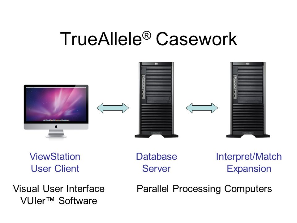 TrueAllele® Casework ViewStation User Client Database Server