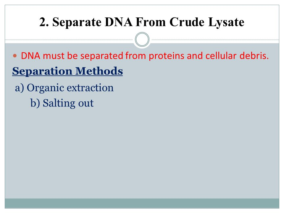2. Separate DNA From Crude Lysate